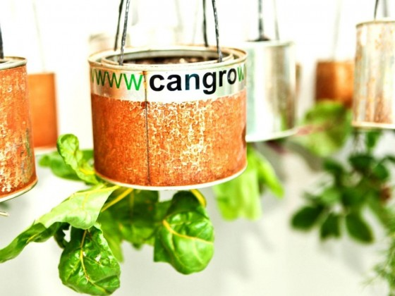 cangrow1