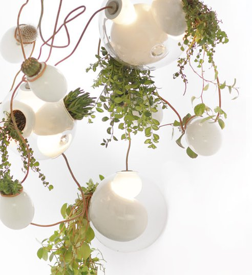omer-arbel-planter-chandelier3b