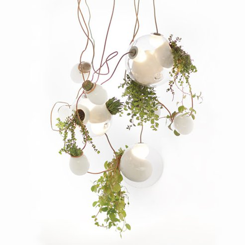omer-arbel-planter-chandelierb