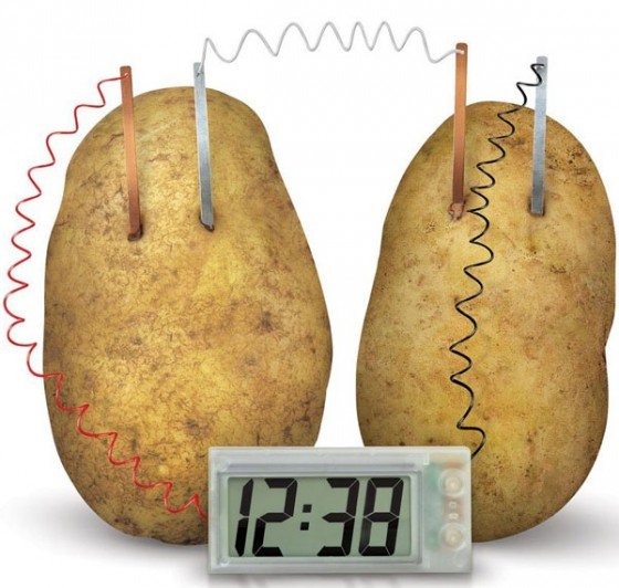 potato as an alternative source of A solid source of niacin and thiamine, zucchinis, the younger cousin to squash, are low in calories and satisfy any potato chip craving the youngsters might have directions: - preheat oven to 450 degrees.